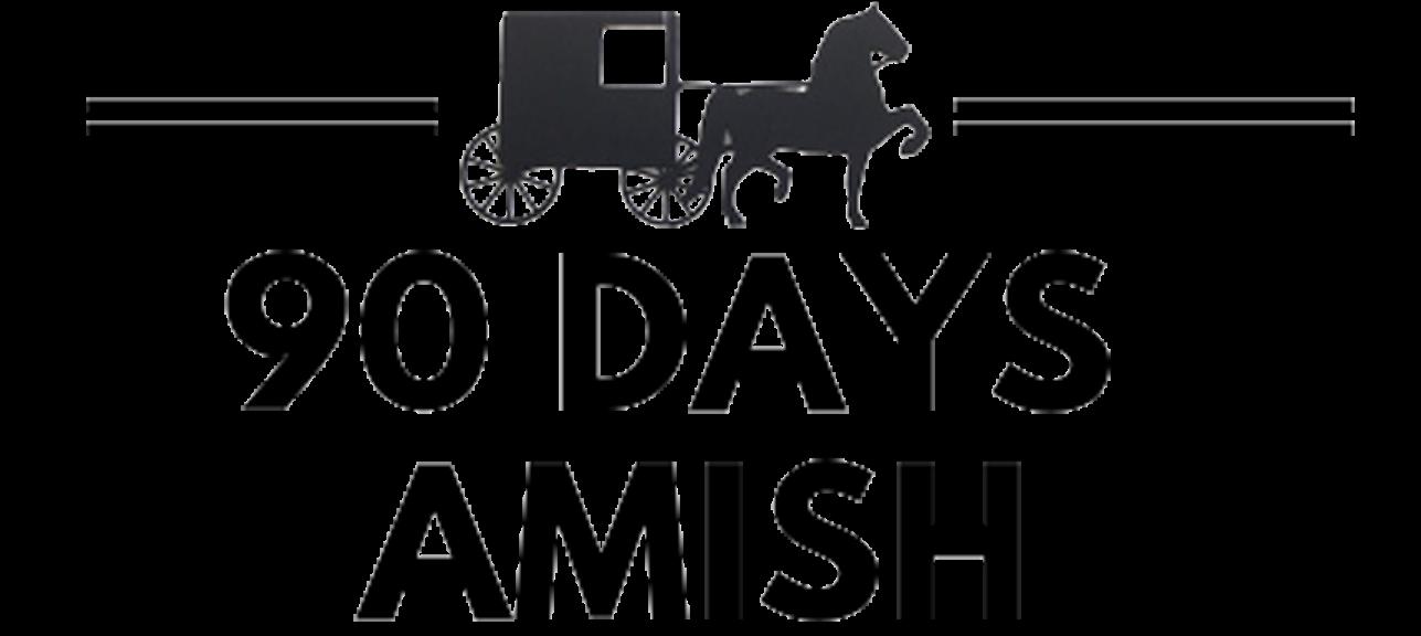90DaysAmish.com